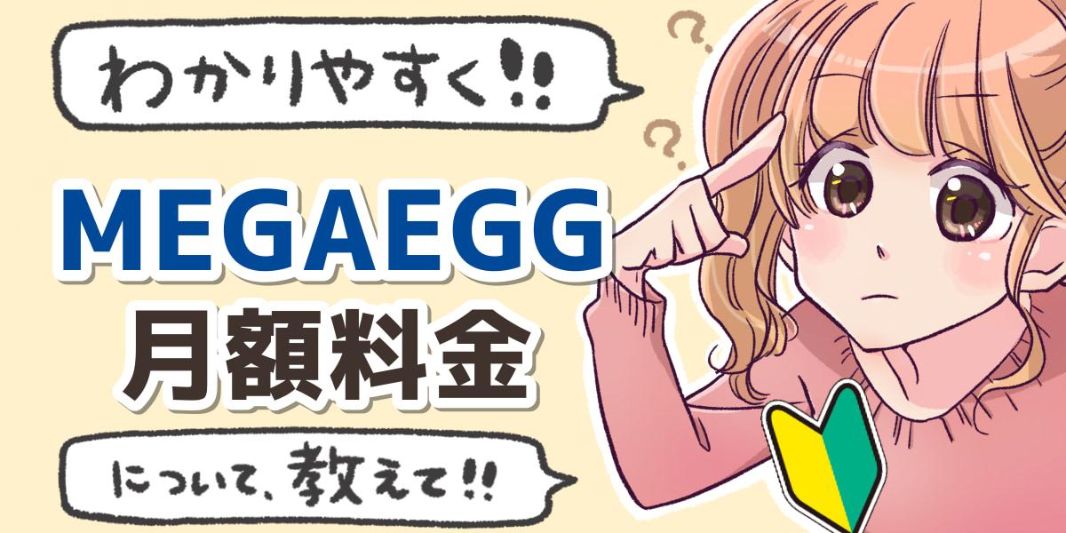 「メガエッグ光(MEGAEGG光)の月額料金について」のアイキャッチ