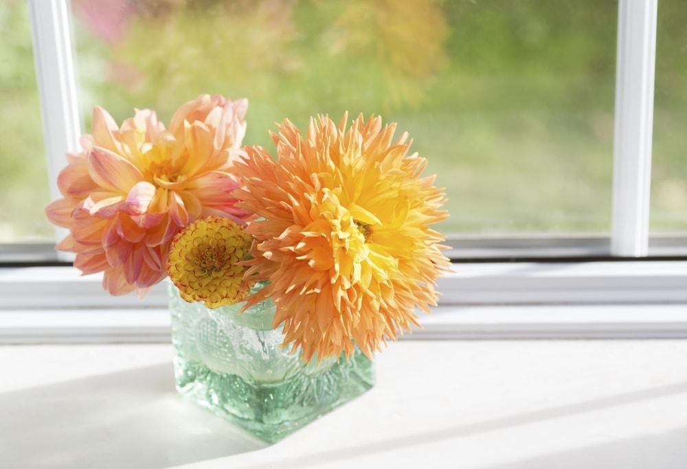 窓際に置いてあるお花