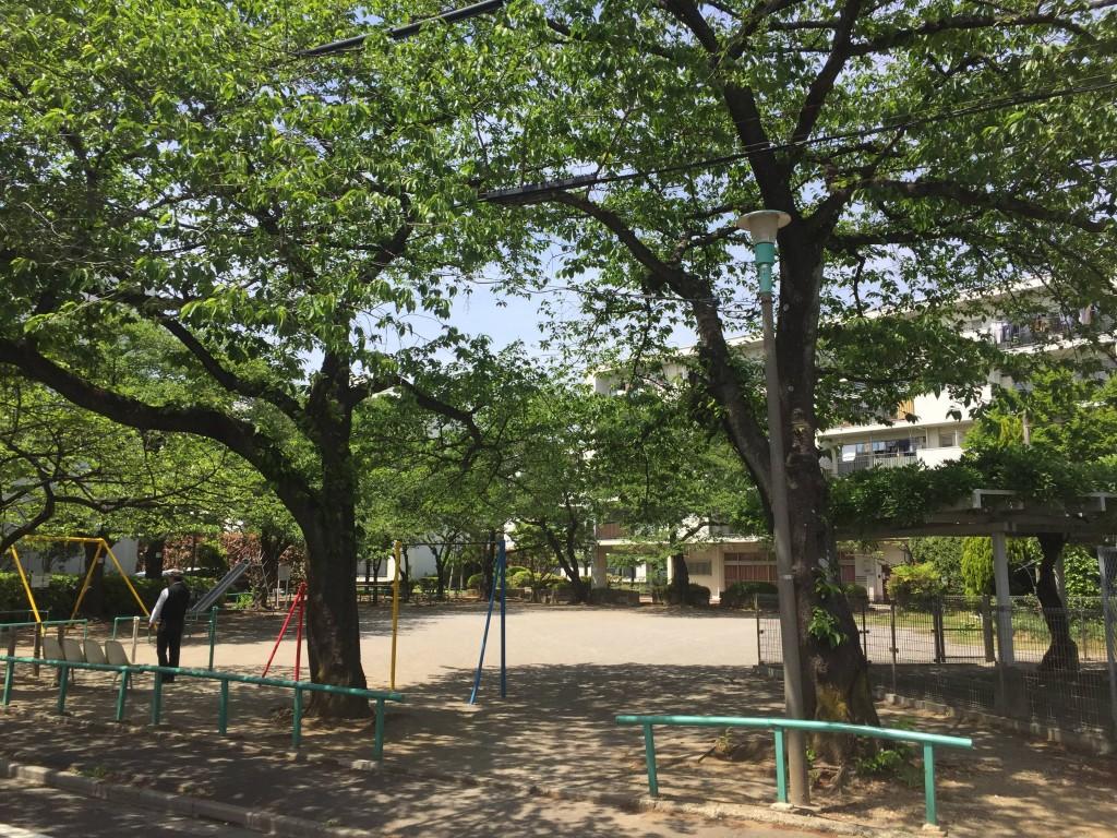 緑が多い穏やかな雰囲気の公園