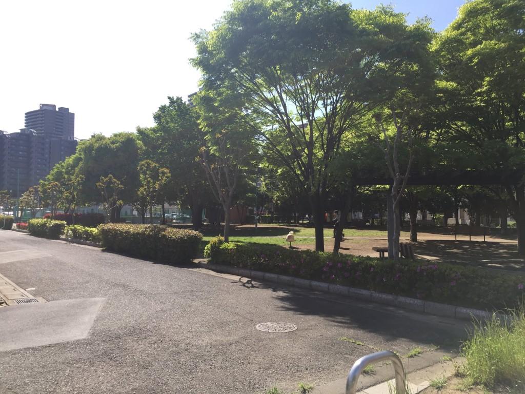 緑が豊かで落ち着いた雰囲気の公園