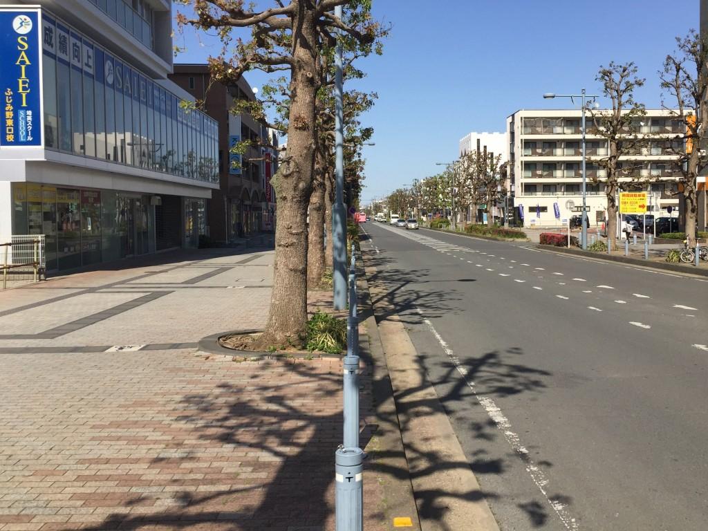 歩道も車道も広い大通り