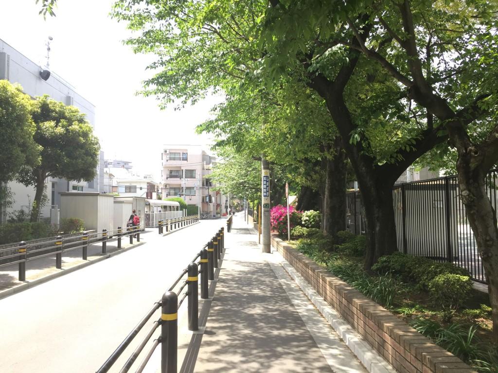 歩きやすい歩道の風景
