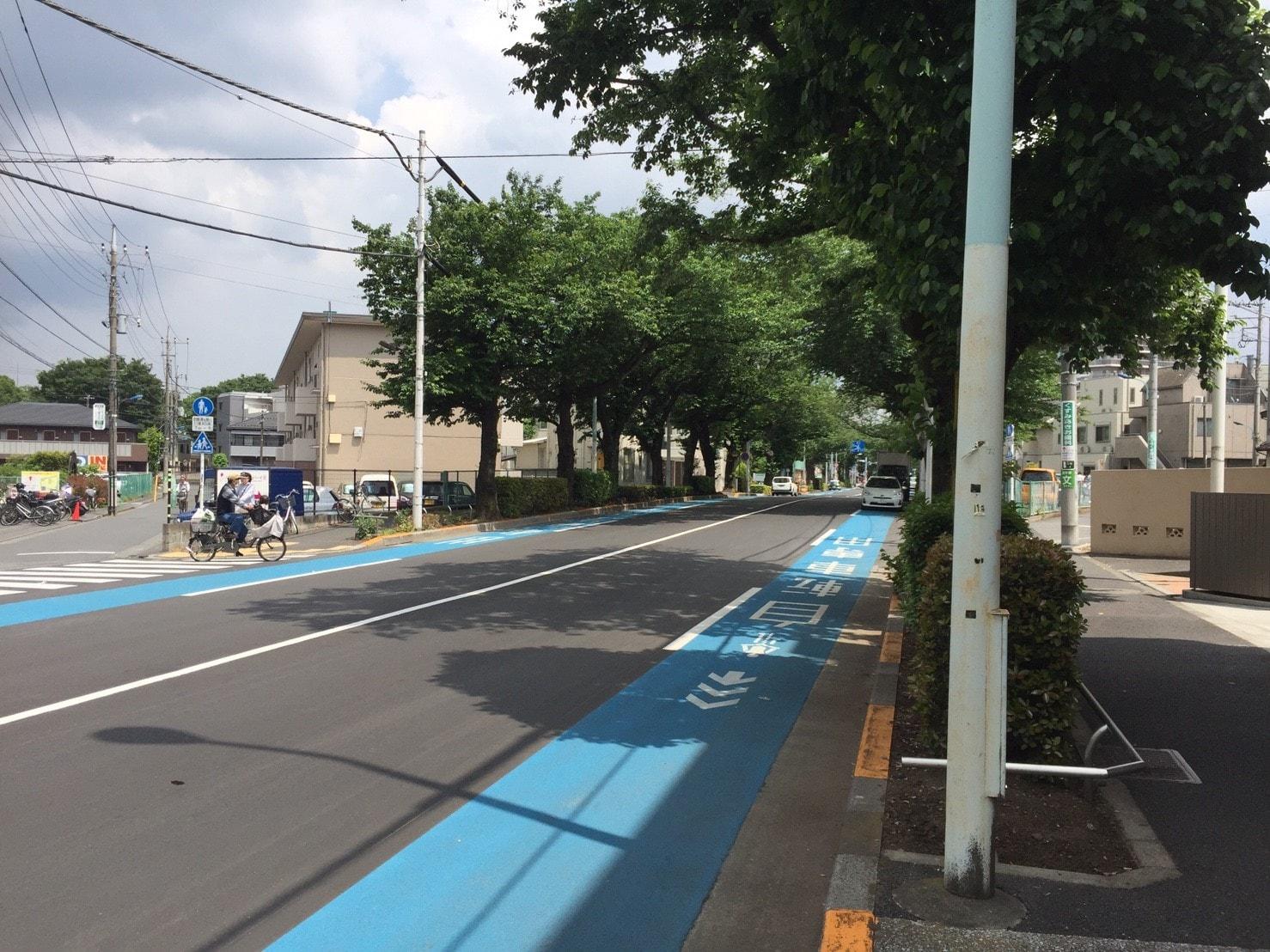 車道と自転車用道路と歩道に別れている緑が多い道路