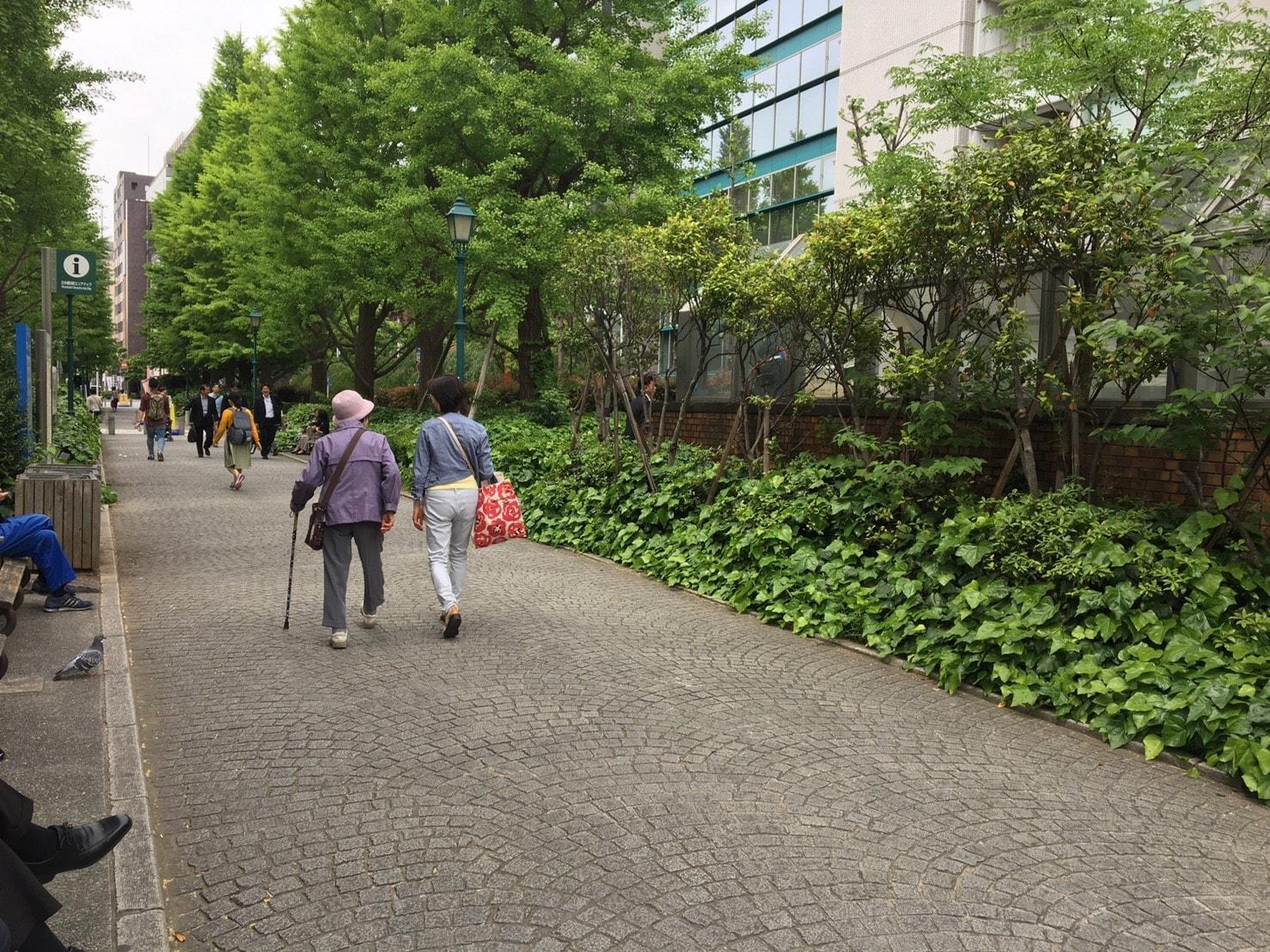 高齢のかたが多く歩いている公園前の風景