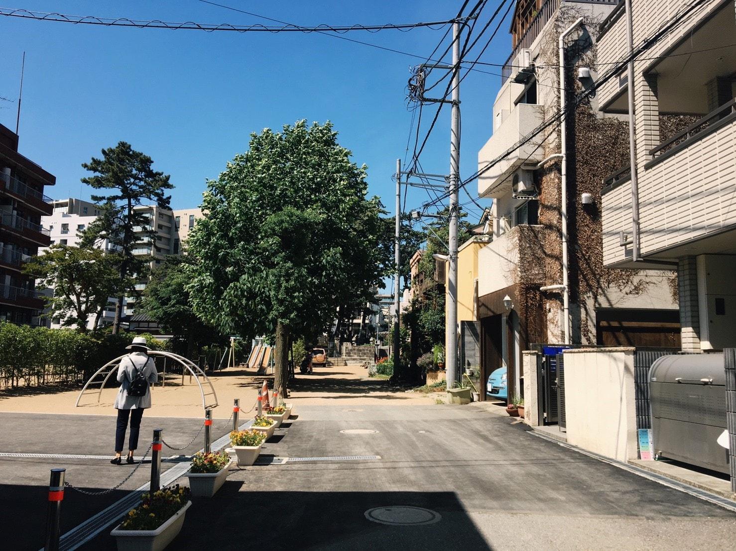 木が多い住宅街の風景