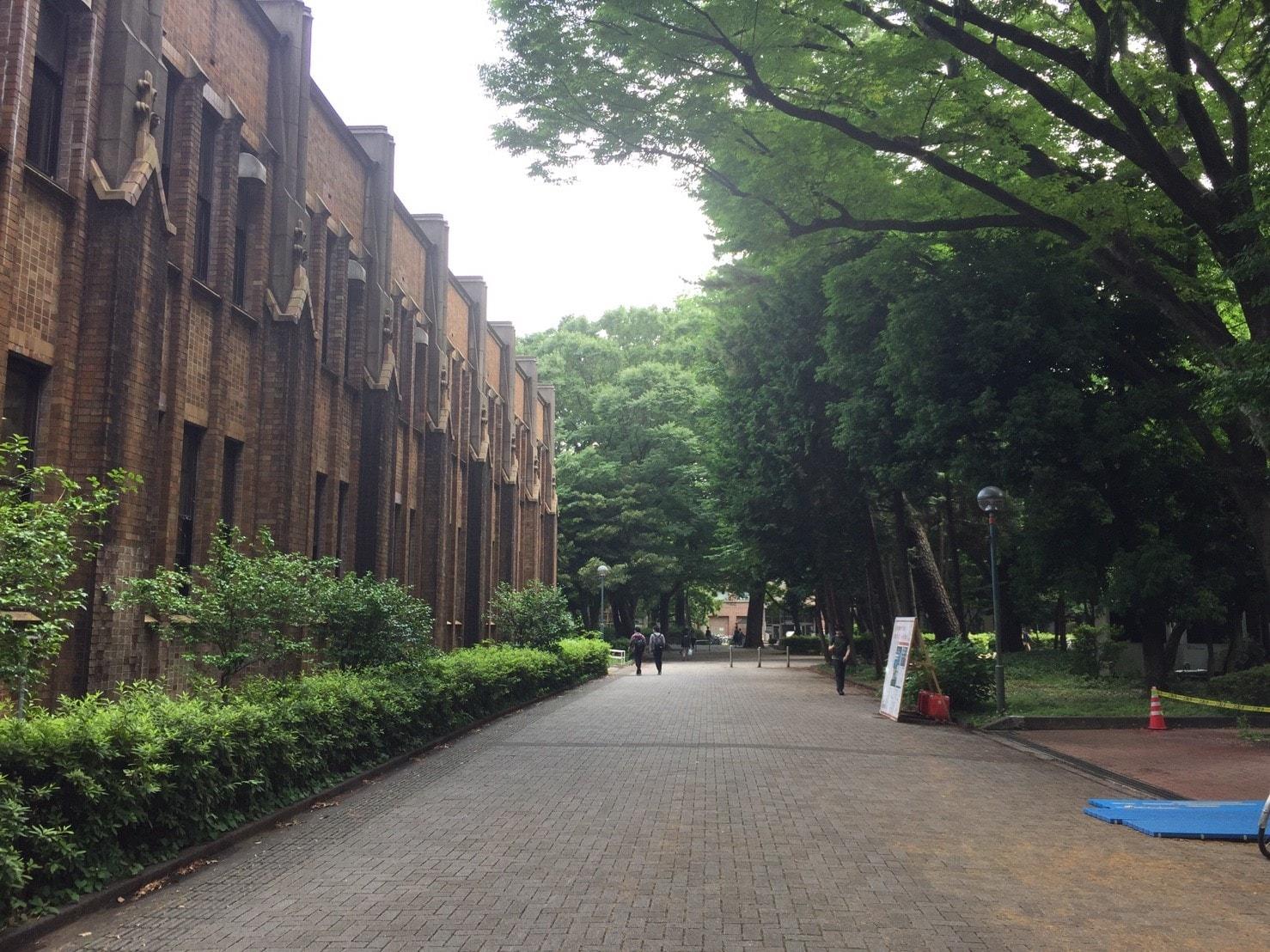 大学構内の通路