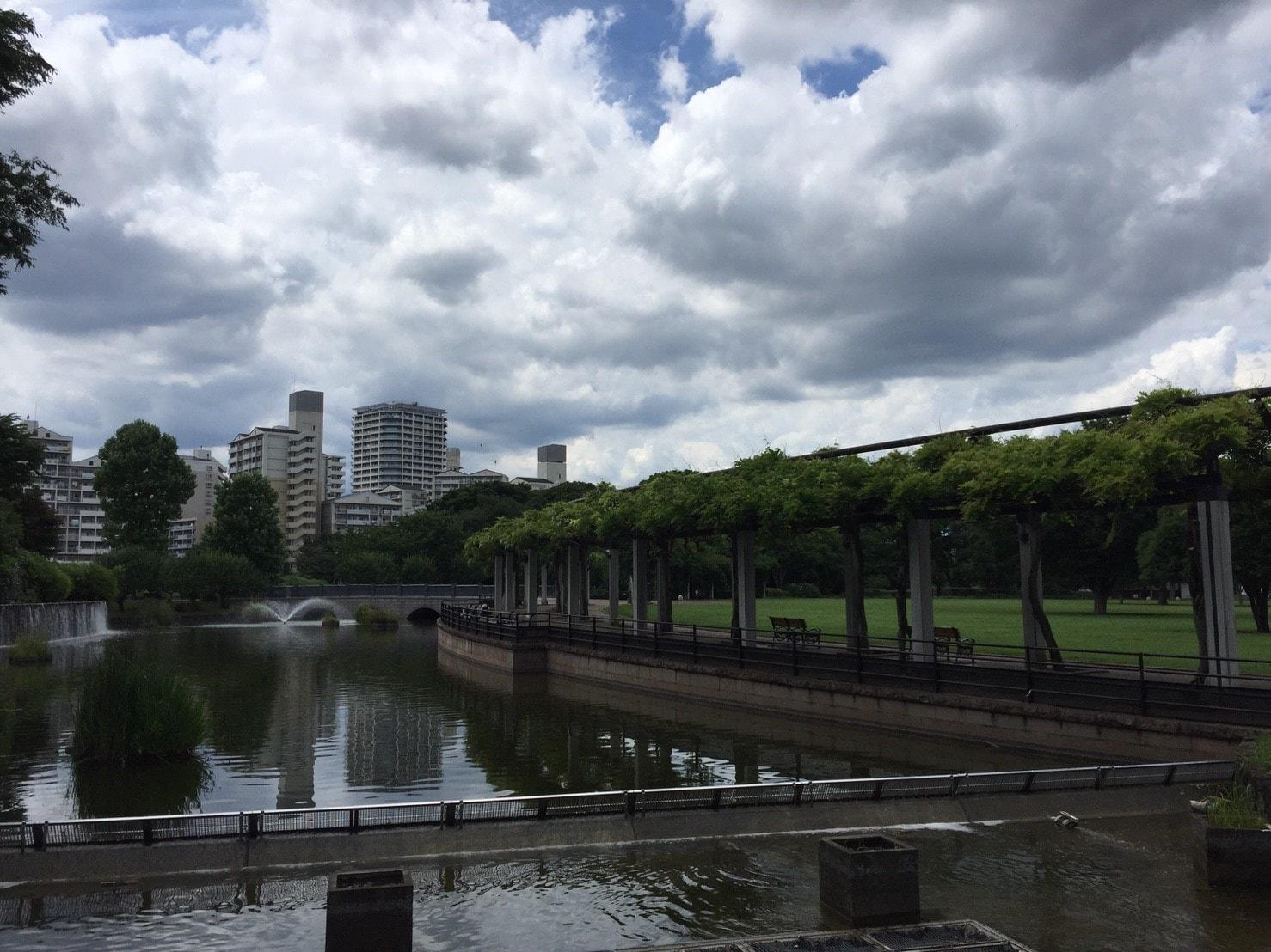 武蔵国分寺公園周辺