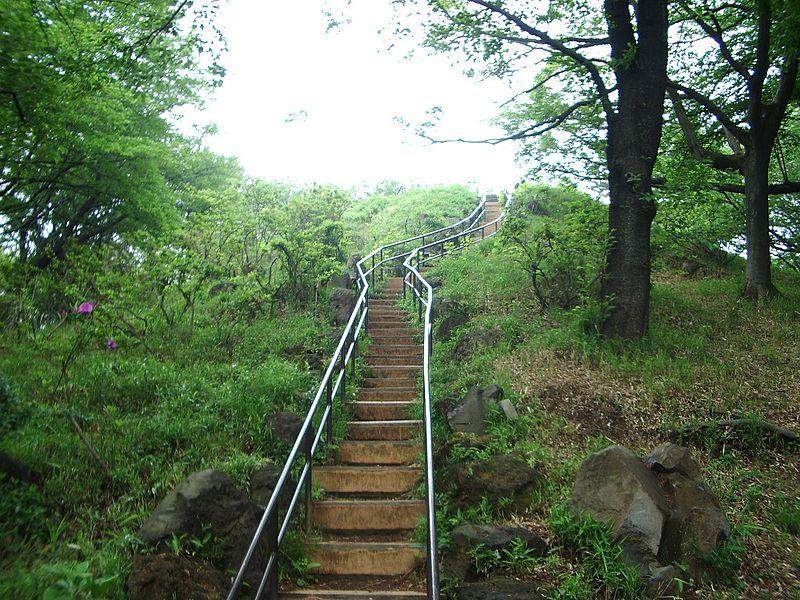 戸山公園の箱根山