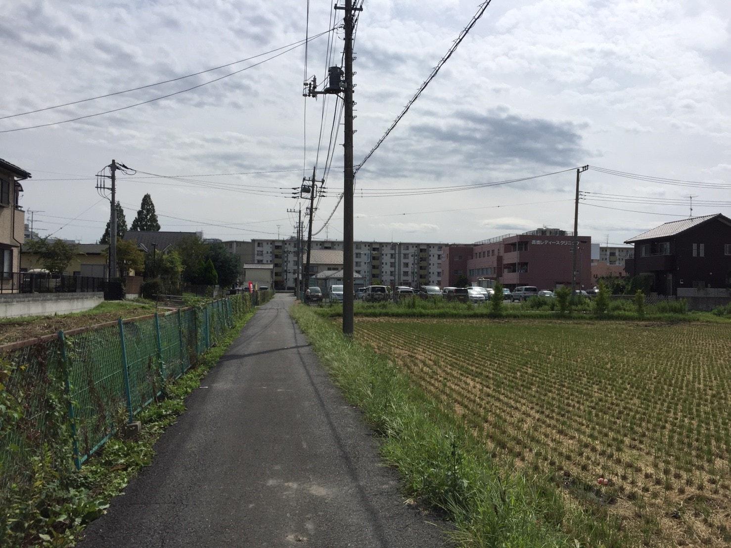 住宅街に混在する畑