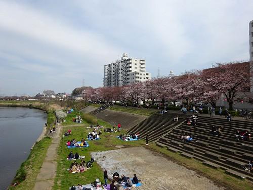 鶴見川の風景