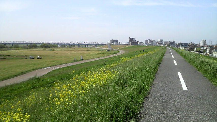 江戸川土手