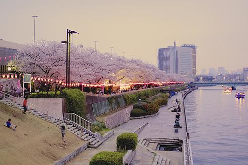 「隅田公園」の風景
