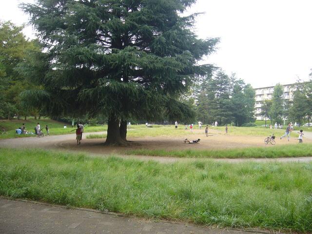 美しが丘公園