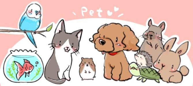 犬、猫、ハムスター、インコ、金魚、ハリネズミ、デグー、亀、うさぎ