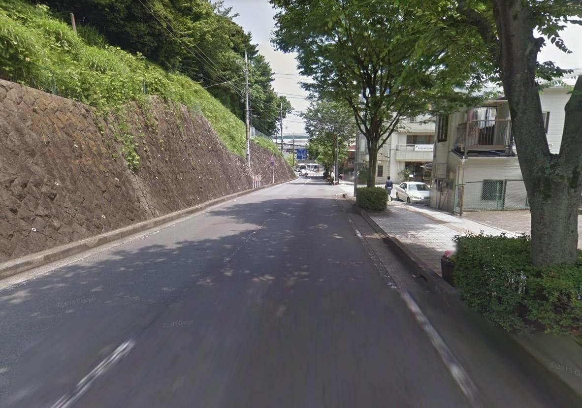 緑豊かな街並み