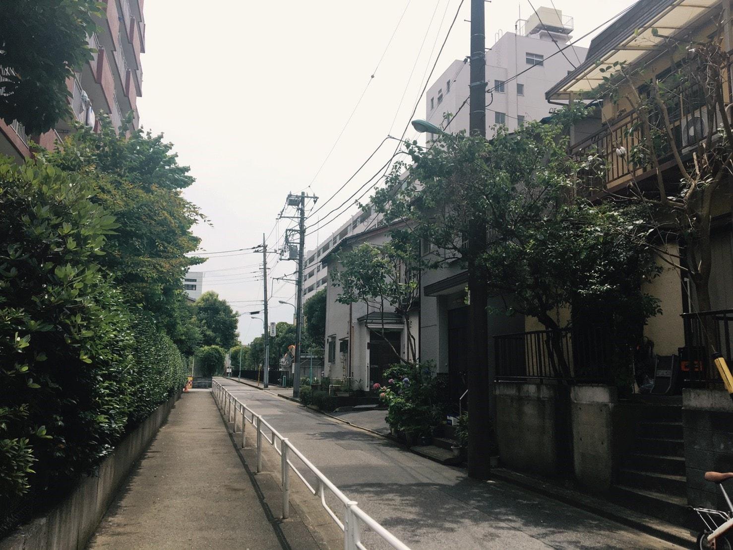 緑豊かな住宅街