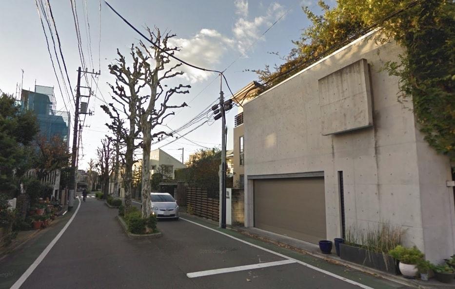 大通りの街路樹