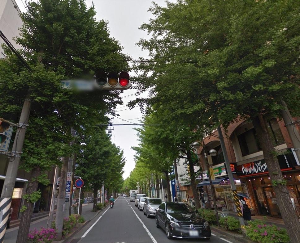 北口の街路樹
