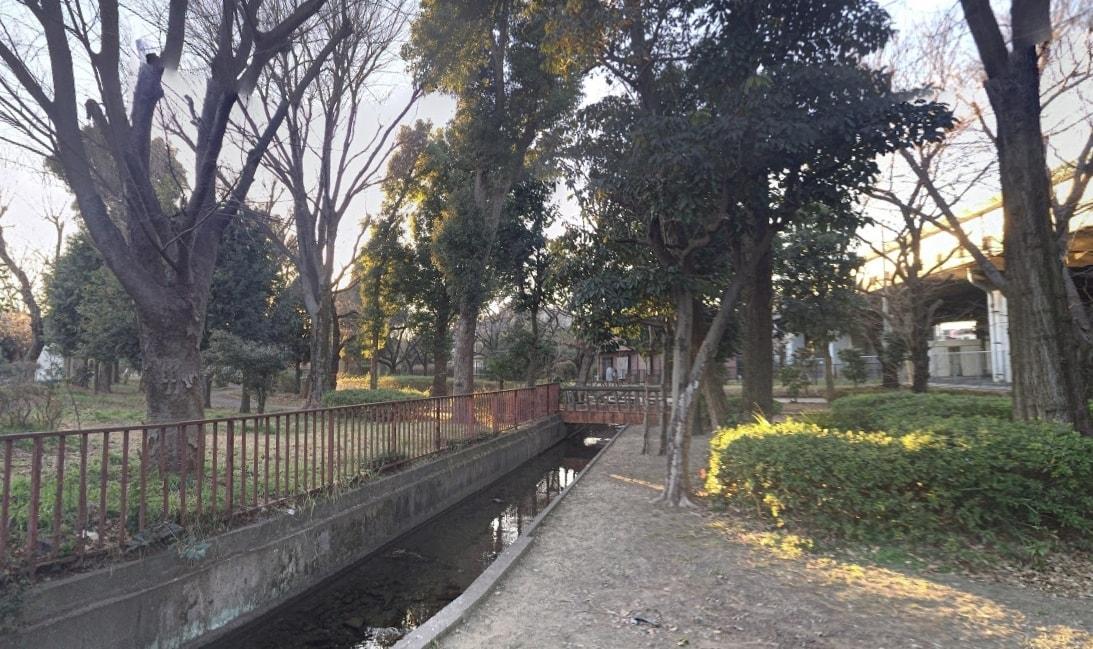 自然豊かな公園