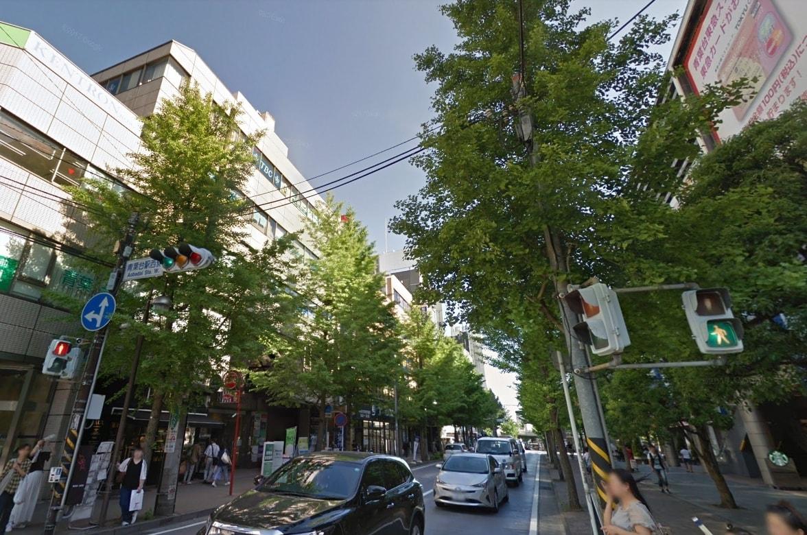 駅近の街路樹