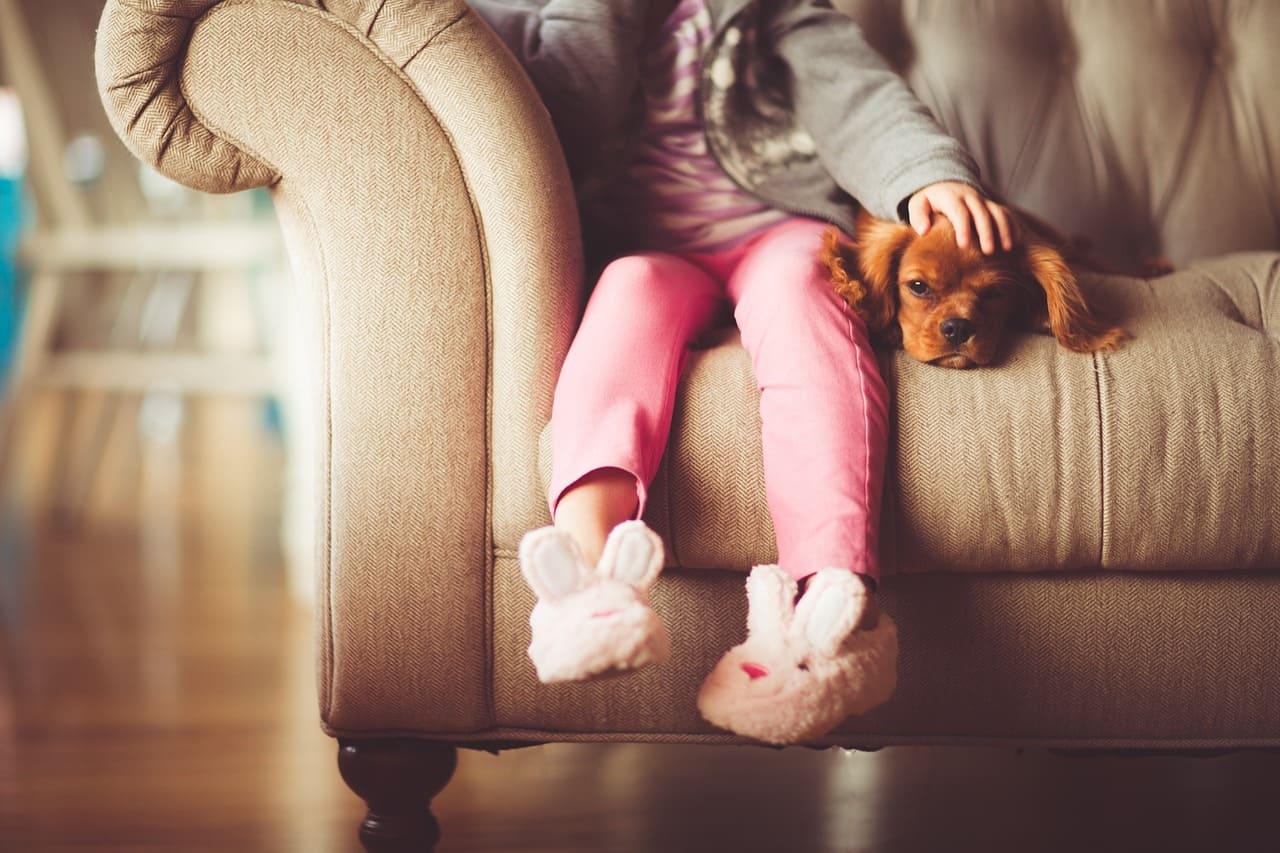 犬と小さい女の子
