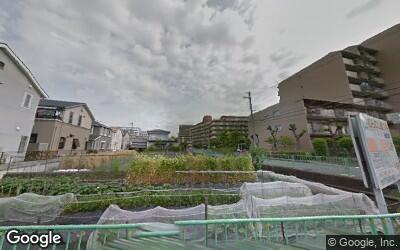 茨木駅近くの畑