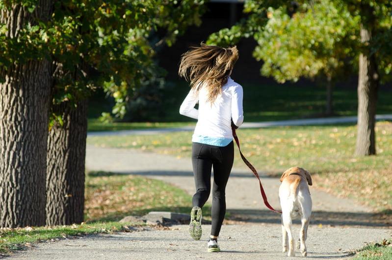 公園で走っている飼い主と犬