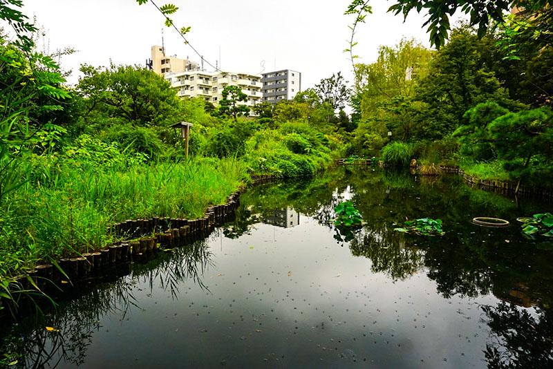 向島百花園3