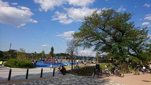下高井戸おおぞら公園の風景