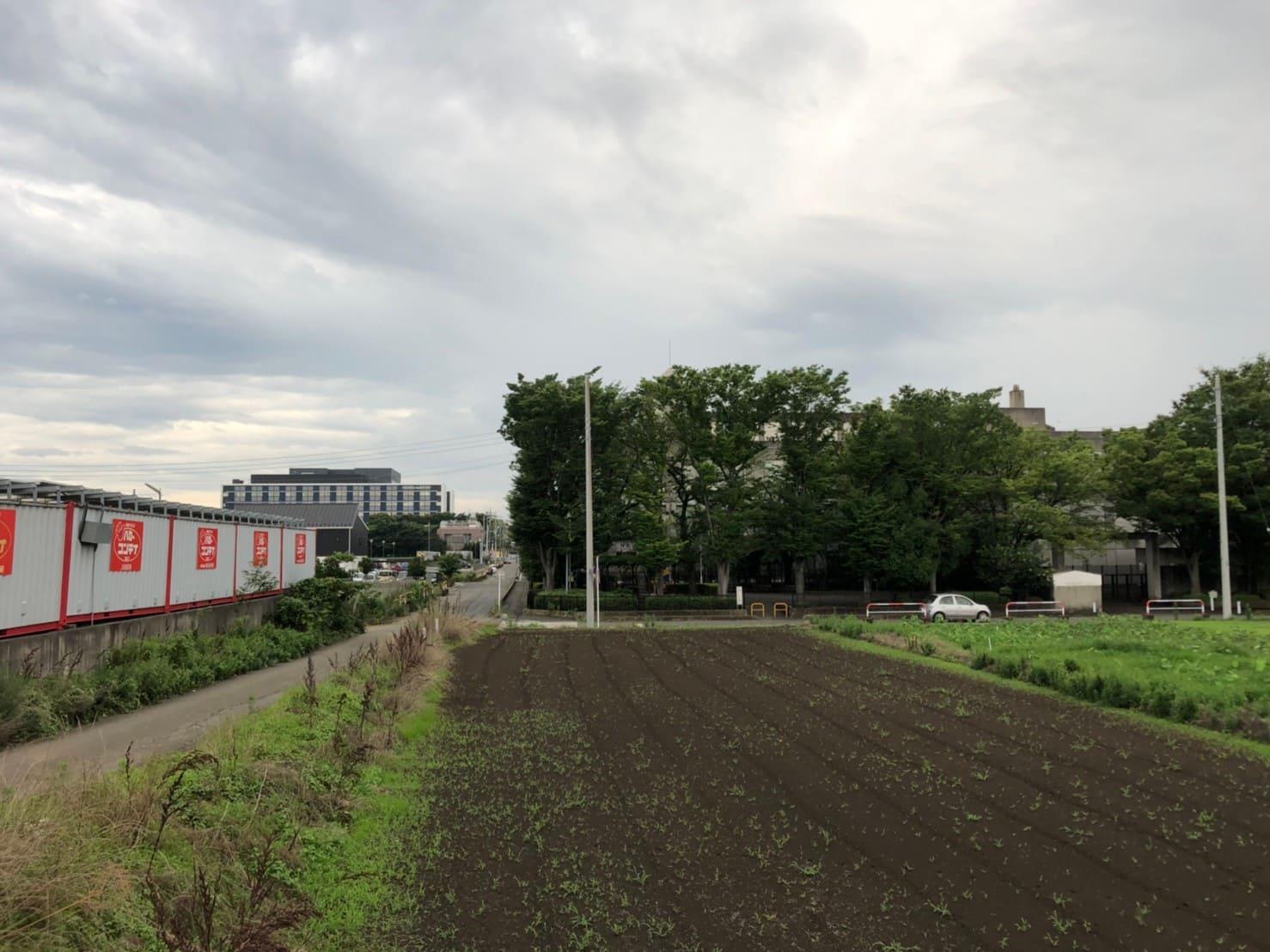 東洋大学近くの畑