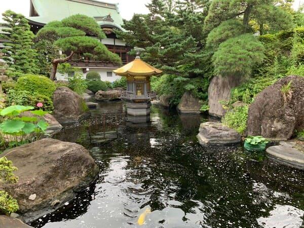 赤塚山乗蓮寺境内の池