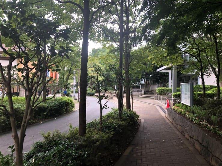 公園横の細道