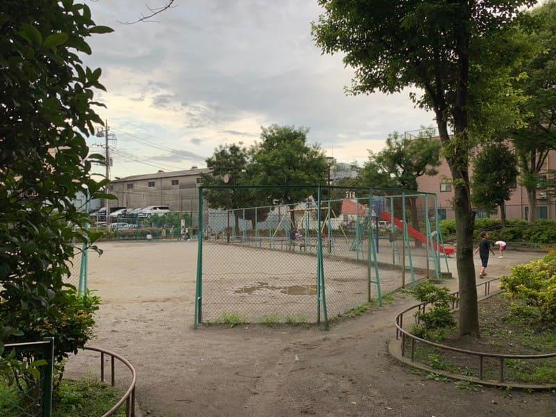 広い公園の風景