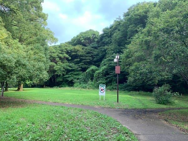 赤塚公園の風景