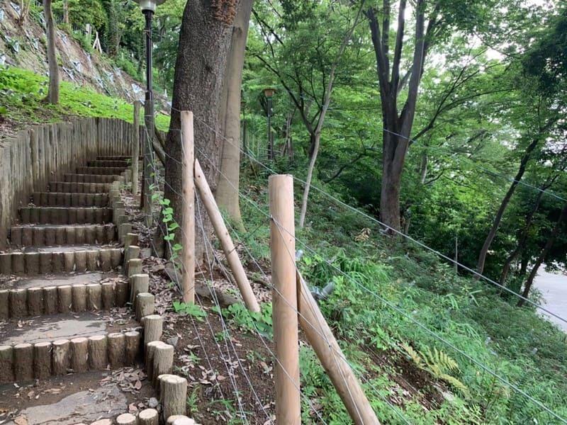 志村城山公園の風景