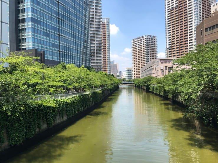 目黒川沿いのタワーマンション