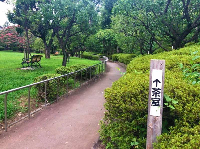 羽根木公園茶室へと続く道