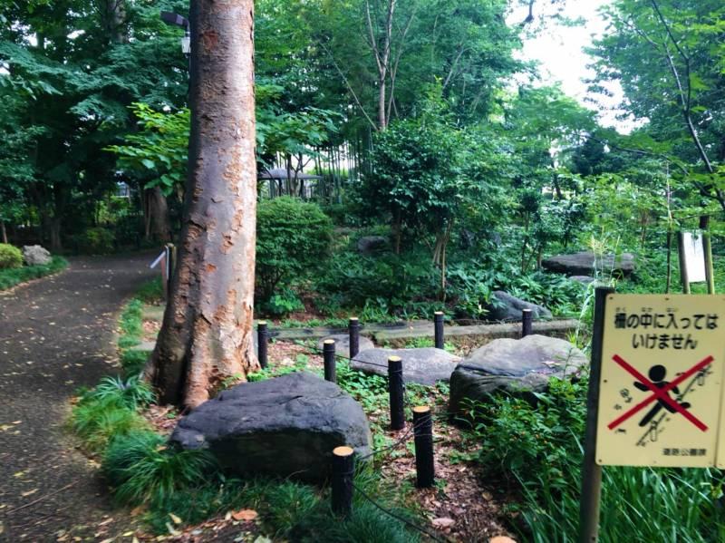 石庭の森緑地