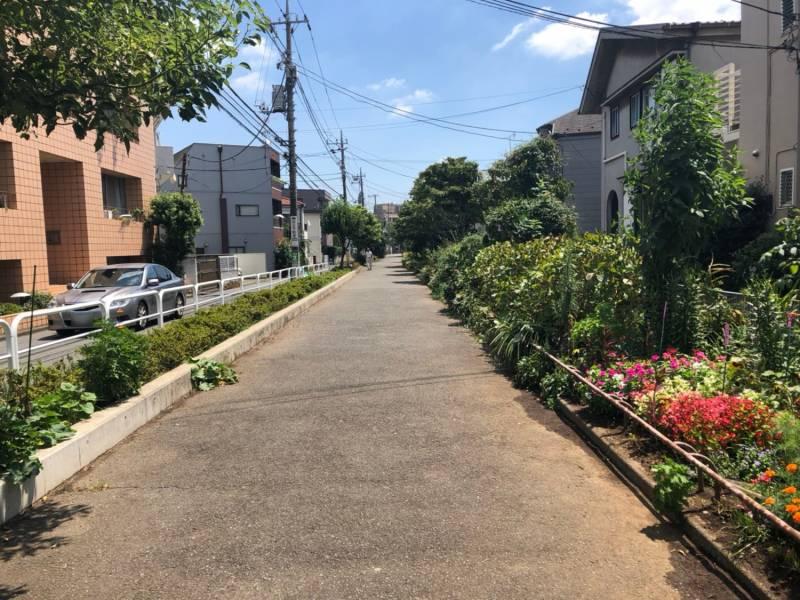 第二緑道の街並み