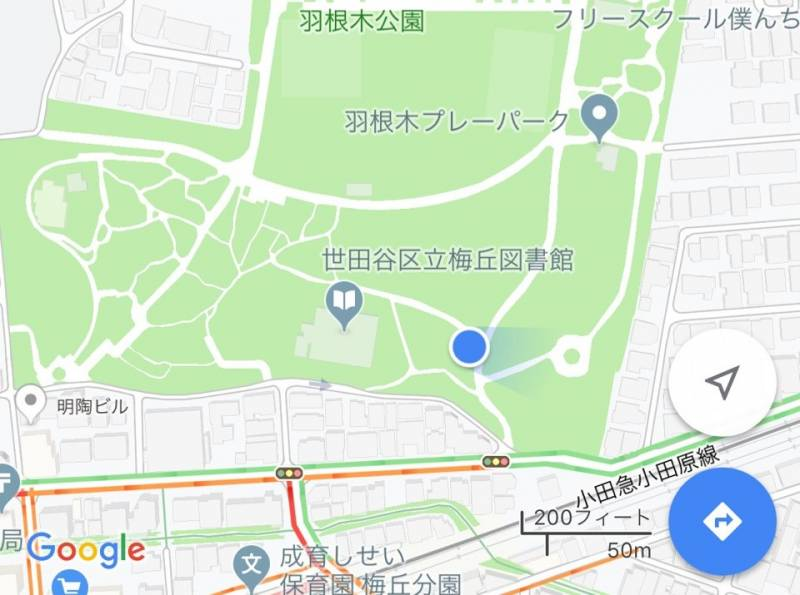 羽根木公園現在地6