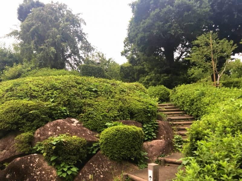 羽根木公園西側2