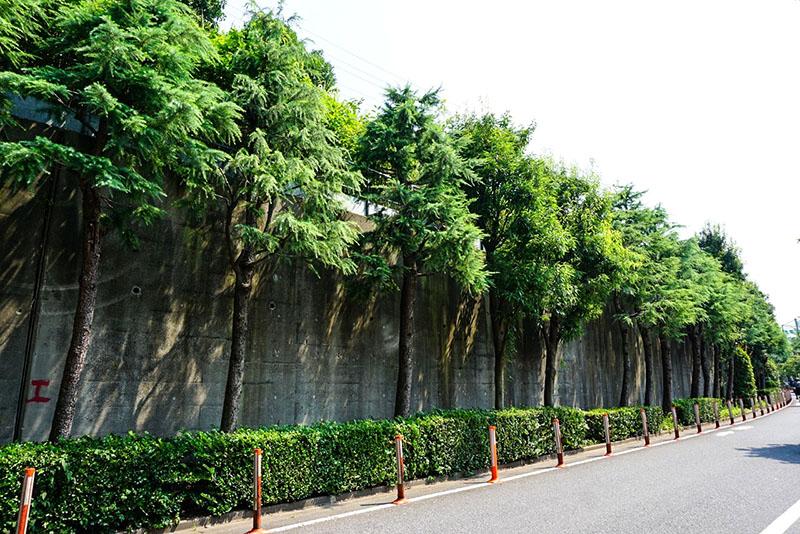 要塞みたいに塀が作られている道路