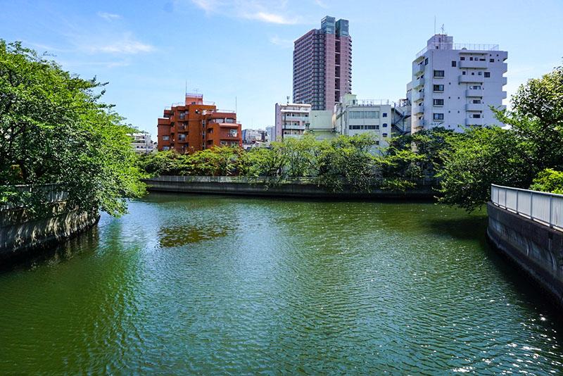 運河から流れ込む川の交差点