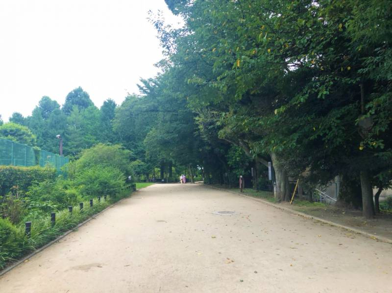羽根木公園散歩道