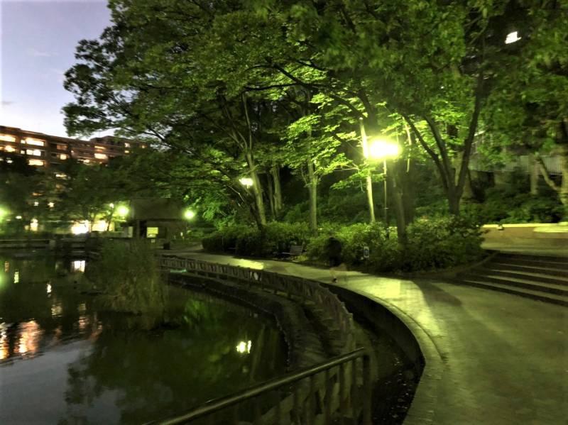 見次公園の夜の様子