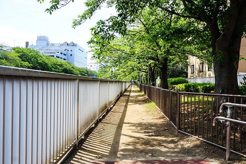 大横川の遊歩道