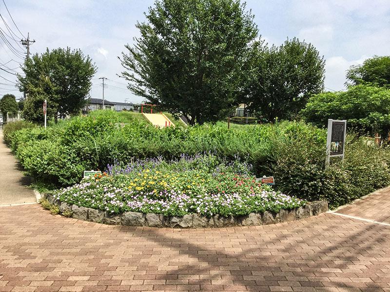 上木崎大けやき公園の花壇