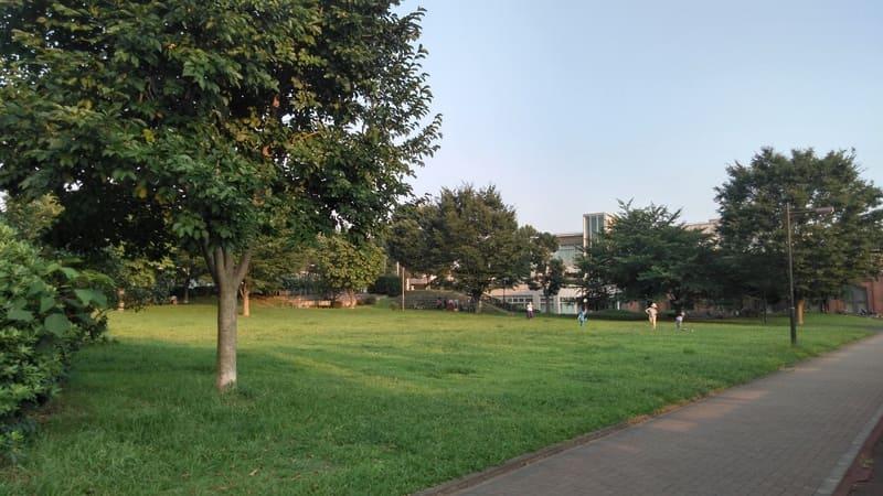 図書館前の広場