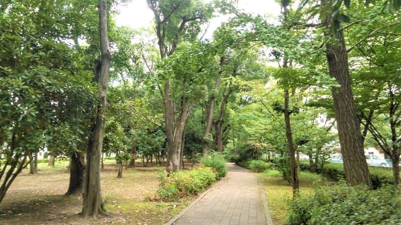 高島平緑地