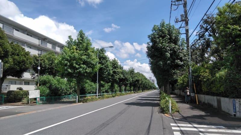 赤塚公園通り
